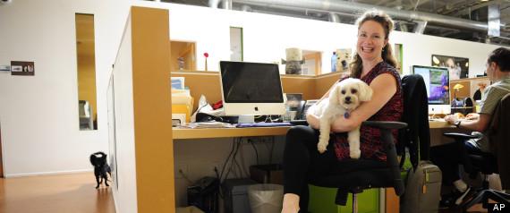 موظفه تصطحب كلبها