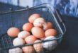 بيض بني وبيض أبيض
